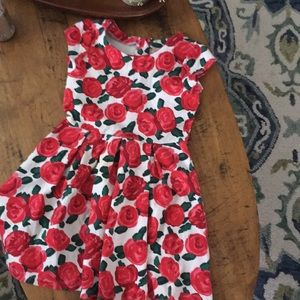 Girls Rose 🌹 garden dress